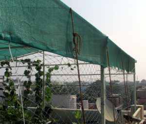 Coir Ropes used on top of shade cloth for guarding against strong winds