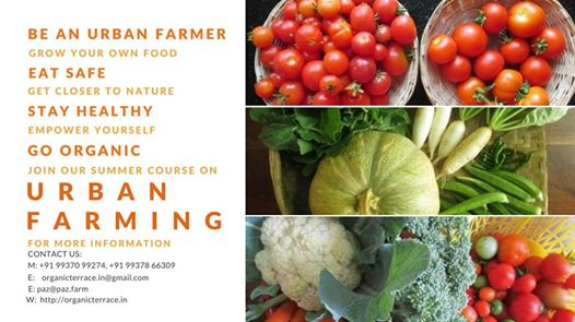 Announcing Summer Course on Urban Farming