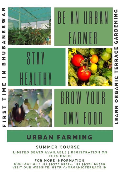 Urban Farming and Organic Terrace Gardening Workshop in Odisha