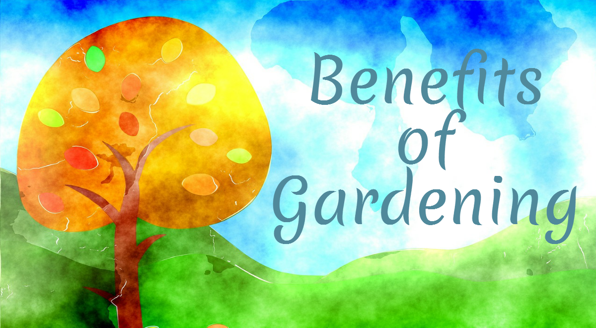 Benefits of Gardening : Infographics