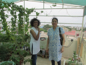 Participants got a chance to visit our model garden
