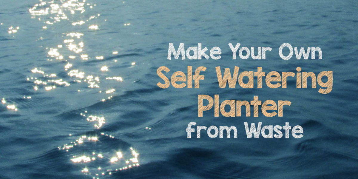 Make Your Own Self Watering Pot