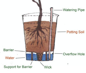 Wick based Self Watering Container cross section