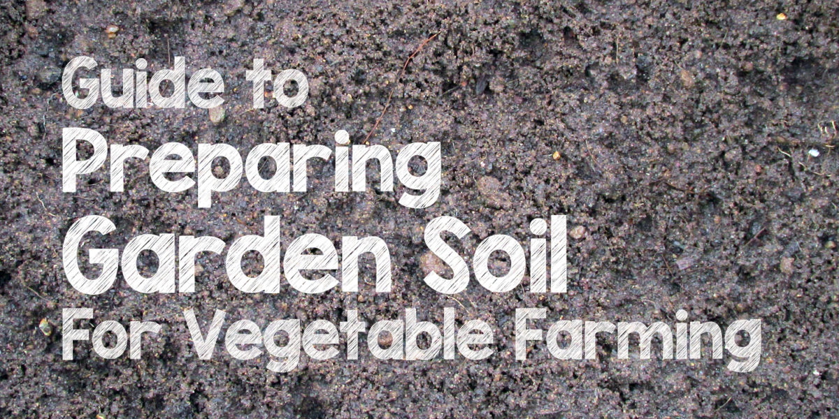Garden soil preparation for organic vegetable farming