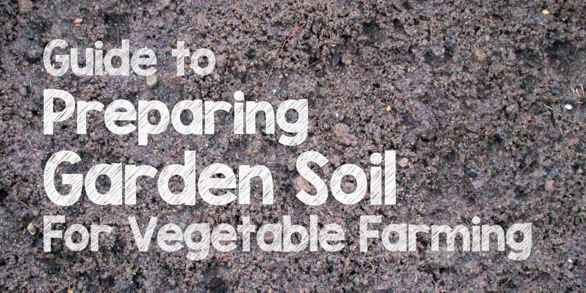 Garden Soil Preparation For Organic Vegetable Farming