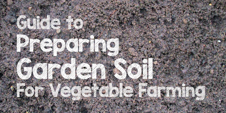 How To Prepare Garden Soil For Organic Vegetable Garden