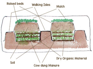 Prepare raised beds by burying layers of organic material