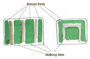 Divide your garden into raised beds and walking isles