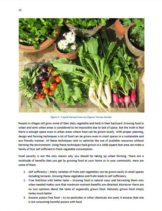 organic urban farming book page sample