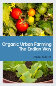 organic urban farming cover