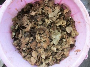 Organic waste can be composted easily at home using an old bucket